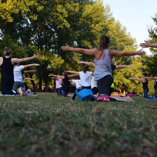 People doing yoga in park