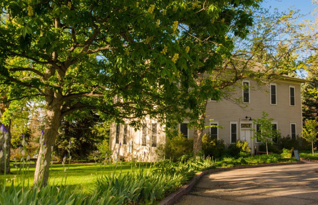 Academic Hall through the trees summer